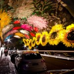 Beautiful Festival of Light in Sydney