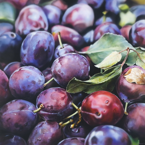 Plums. Hyper-realistic paintings American artist Ben Schonzeit