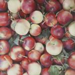 Sort of apples. Hyper-realistic paintings American artist Ben Schonzeit