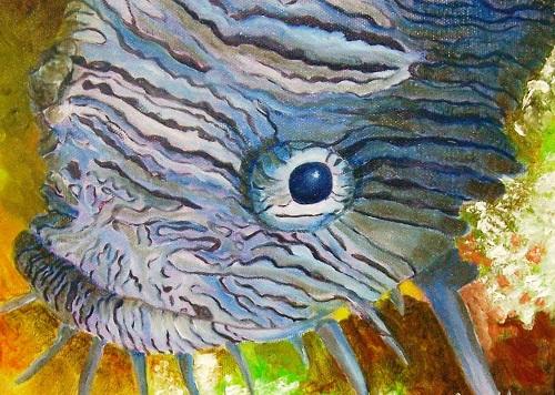 Splendid cryptic and amazing toadfish