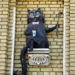 Hippo cat in Kiev, Ukraine