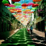 Beautiful installation of umbrellas