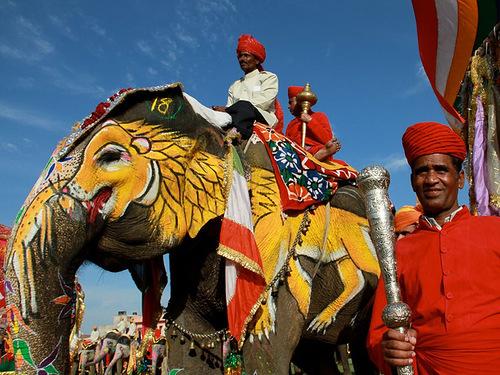 Jaipur Elephant festival