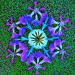 Inspirational Flower mandala