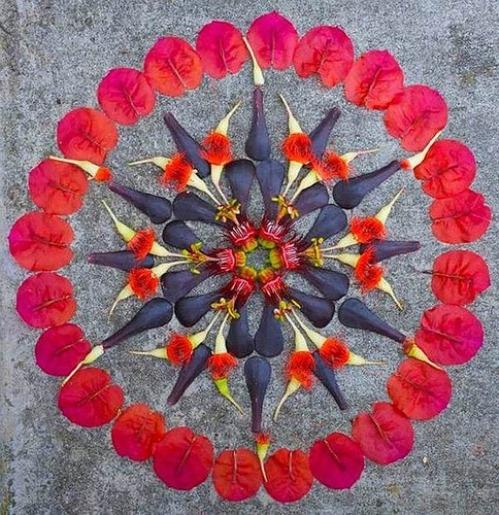 Kathy Klein's artful Mandalas