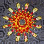 Colorful Flower mandala