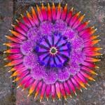 Awesome Mandala by Kathy Klein
