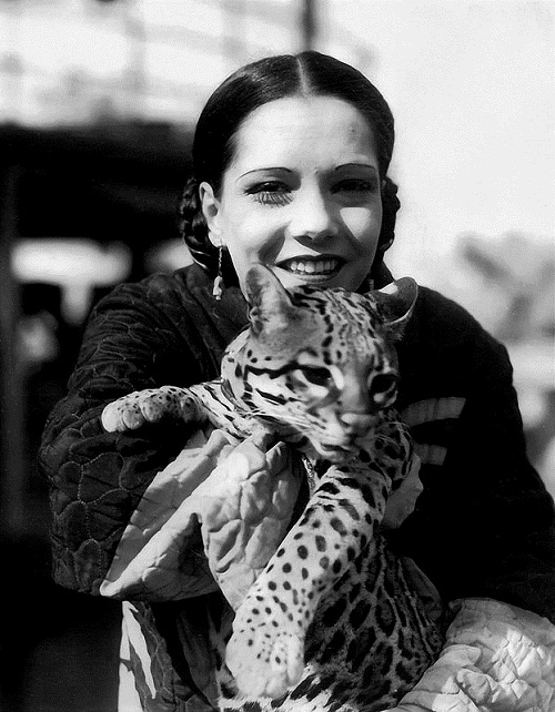 Gorgeous American actress Lupe Velez with a wild cat
