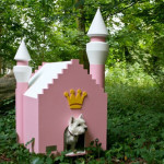 Royal pink dog house