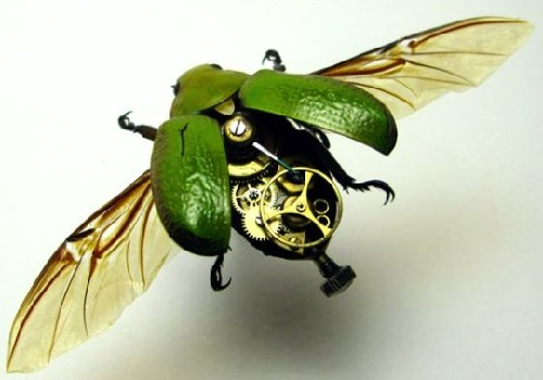 Steampunk Insects by American artist Mike Libby
