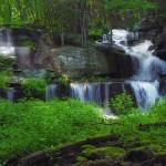 Sawkill Falls, Pike County, Pennsylvania
