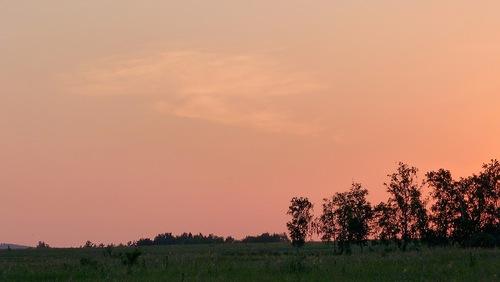 Siberian Summer by Sergey Stepanov