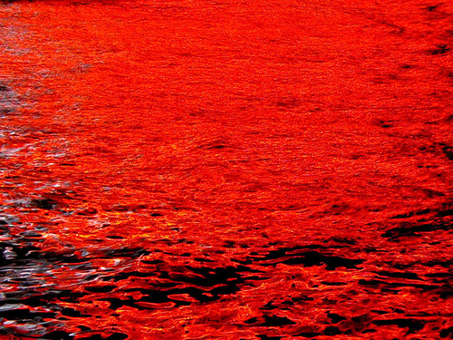 The bloody red color of the Azov Sea, near Berdyansk (port city in the Zaporozhye region), Ukraine