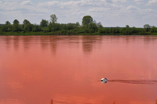 Azov Sea turned bloody red