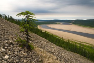 Beautiful Siberian river Olenyok