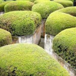 Stone labyrinth, the walls of which – covered with green grass. Hakone Open-Air Museum