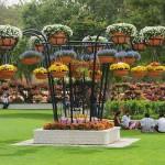 Al Ain Paradise flower park