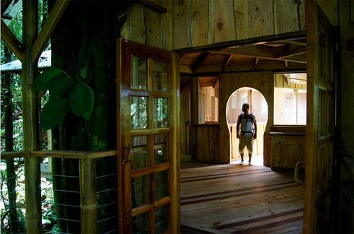 Finca Bellavista – Village of houses in the trees