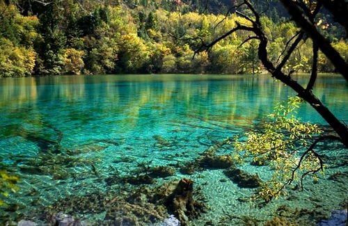 Five Flower Lake in Jiuzhaigou Valley