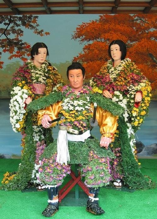 Japanese dolls from living chrysanthemums