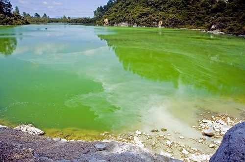 Ngakoro lake in New Zealand catches the eye with pleasant green color