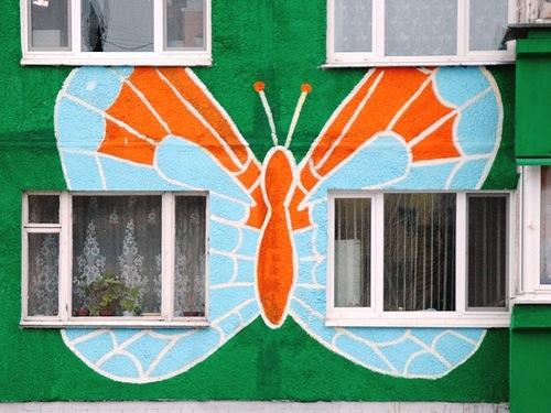 Butterfly. Ramenskoye, Moscow region, Russia