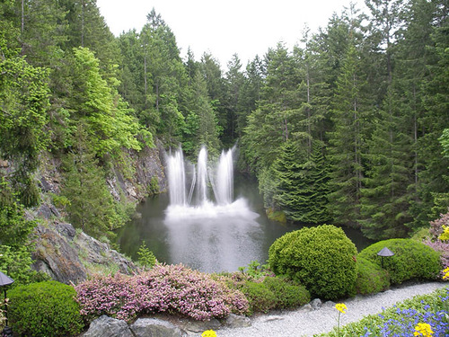 Natural waterfalls decorate the garden