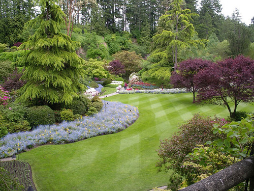 Perfectly cut green lawns