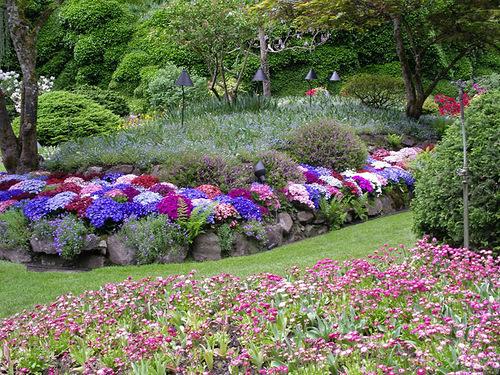 Flower Garden Butchart
