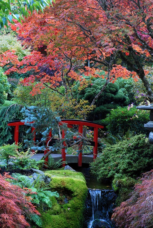 Colors of The Butchart Gardens