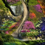 Stairs to hills