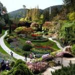 Fabulous Butchart Garden. Canada