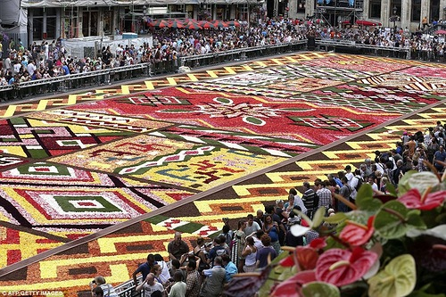 Gorgeous flower carpet on the Grand-Place of Brussels
