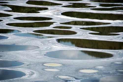 Spots on the surface of Lake Khiluk in British Columbia, Canada