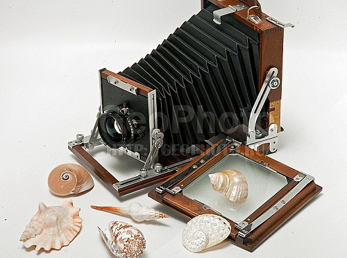 Sea shells and retro camera. Work by Russian photographer Alexander Knyazev