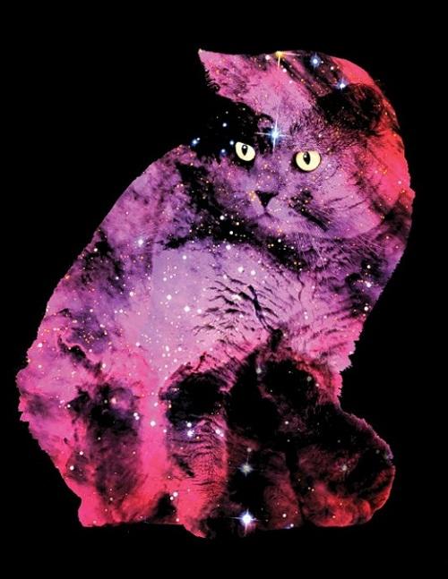 Celestial Cats by Boya Latumahina