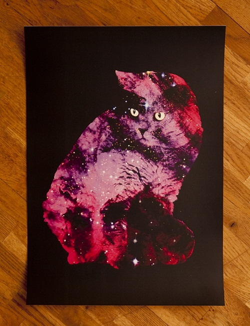 Stunning Celestial Cats by British freelance artist Boya Latumahina (Zippora Lux)