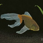 Gold Fish. Scratchboard painting by American artist Dan Berg