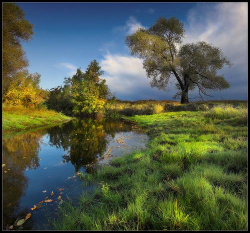 The breath of autumn by Ukrainian nature photographer Aleksandr Kitsenko