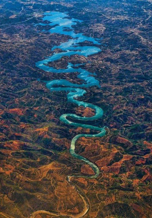 The blue dragon by Steve Richards