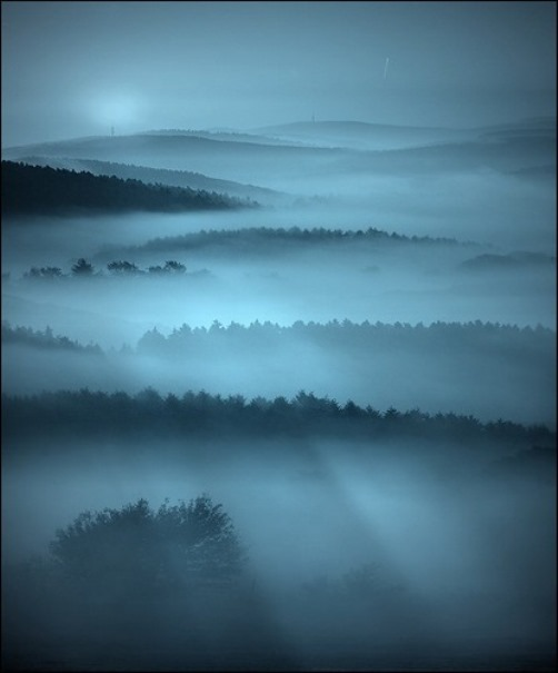 Purple mist. Photo by German photographer Veronika Pinke
