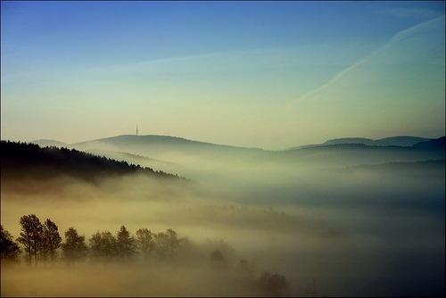 Foggy morning. Photo by Veronika Pinke