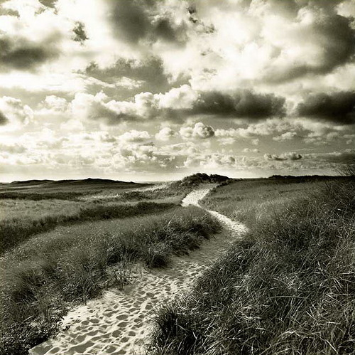 Road. Black and white photo by Toronto based photographer Michael Kahn