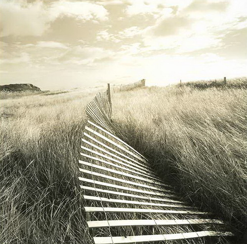 Fence. Black & white photo by Canadian photographer Michael Kahn