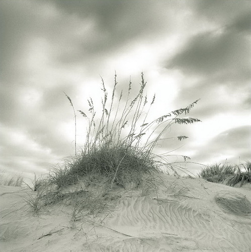 Sands. Black & white photo by Canadian photographer Michael Kahn