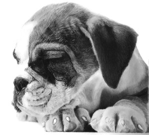Good night. Pencil on watercolor paper. Drawing by Franco Clun