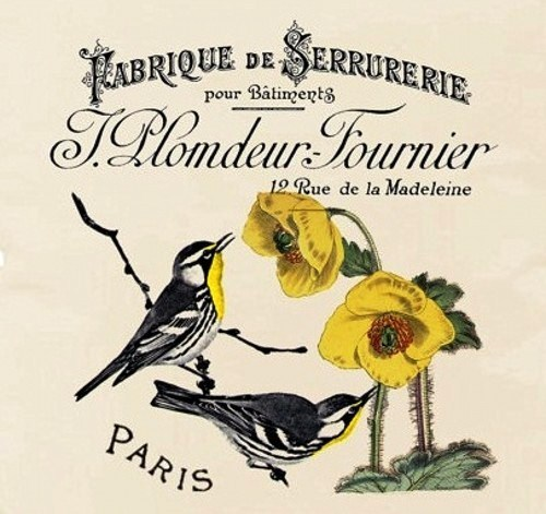 Beautiful illustrations of birds on French vintage postcards