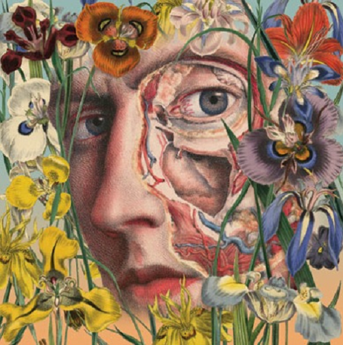 A face among flowers. Anatomical painting by Argentinian artist Juan Gatti
