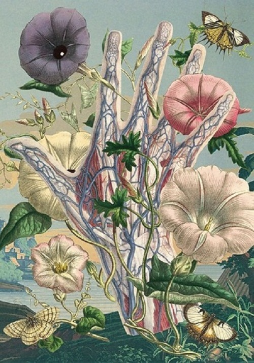 Veins and arteries hand among flowers and insects. Painting by Argentinian artist Juan Gatti