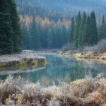 A frosty autumn morning along the meandering riverbank of the Moyie river, located in British Columbia's southern interior